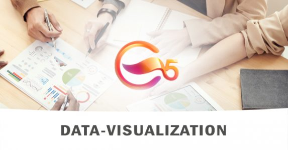 Formation DATA VISUALIZATION